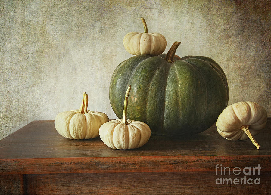 Green Pumpkin And Gourds On Table  Photograph  - Green Pumpkin And Gourds On Table  Fine Art Print