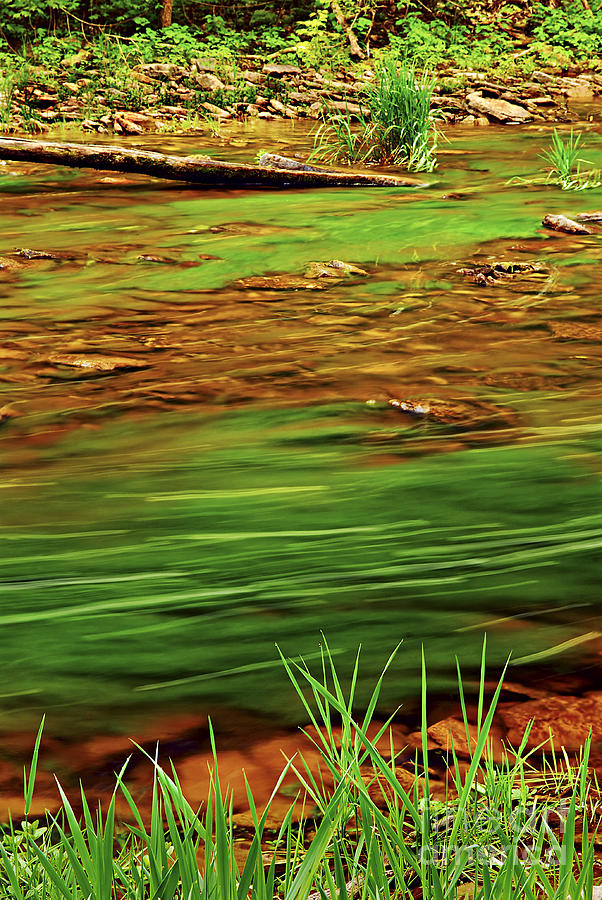 Green River Photograph  - Green River Fine Art Print