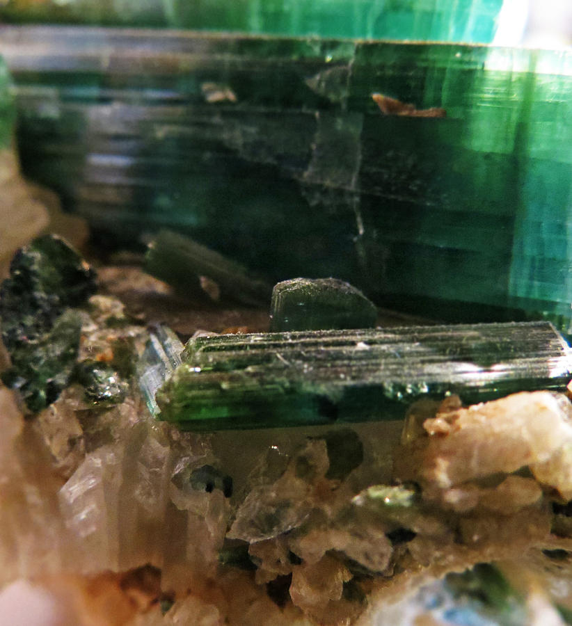 Green Tourmaline Photograph  - Green Tourmaline Fine Art Print