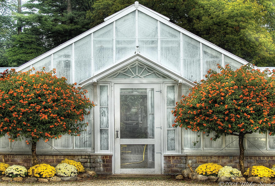 Greenhouse - The Green House Door Photograph  - Greenhouse - The Green House Door Fine Art Print