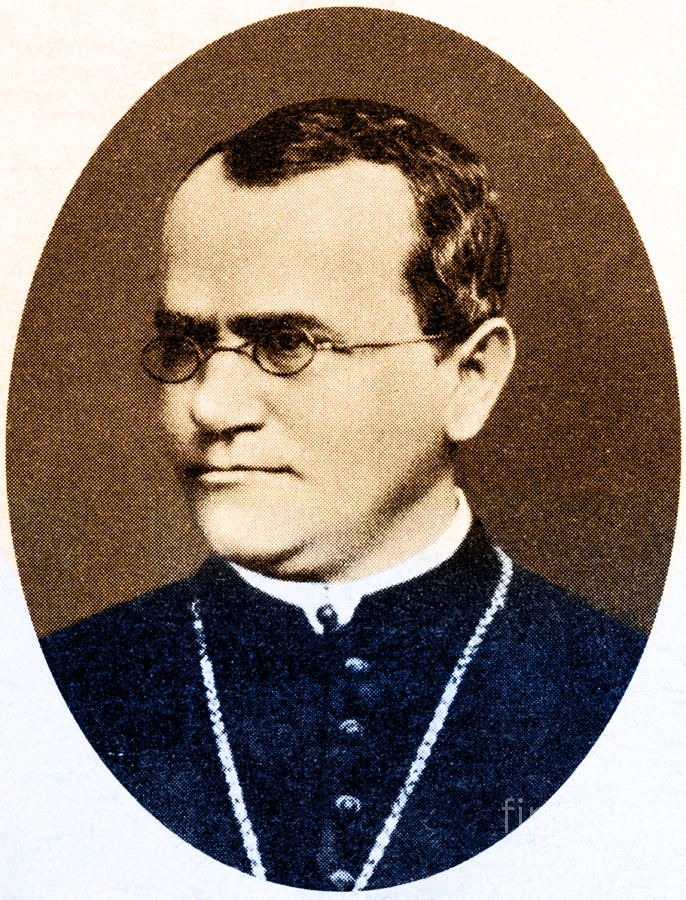 Gregor Mendel, Father Of Genetics Photograph