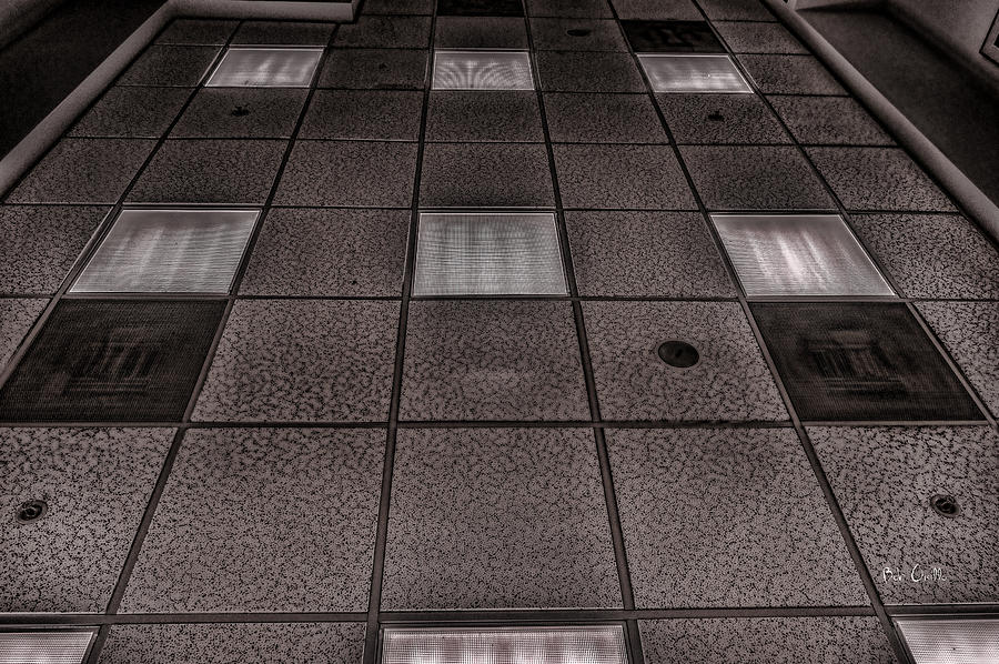 Grid Photograph  - Grid Fine Art Print