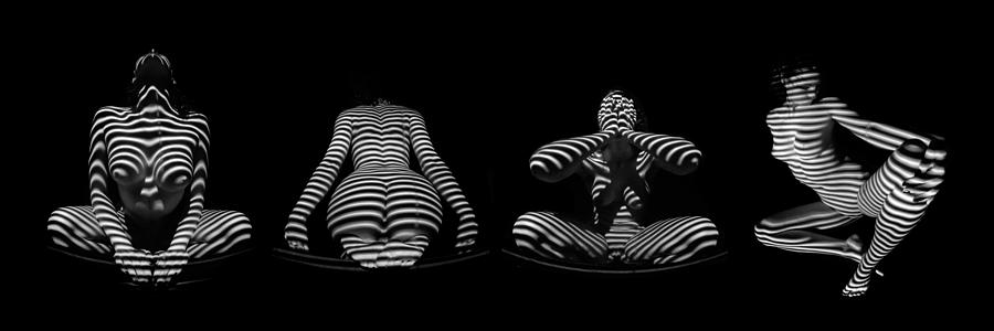 H Stripe Series One Sensual Zebra Woman Abstract Black White Nude Photograph  - H Stripe Series One Sensual Zebra Woman Abstract Black White Nude Fine Art Print