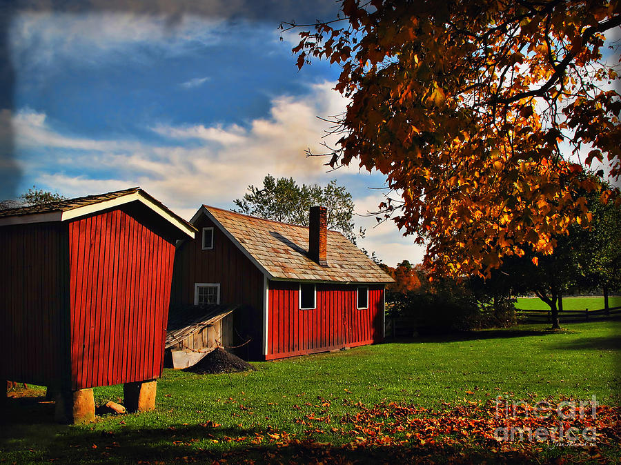 Hale Farm Photograph - Hale Farm In Autumn by Joan  Minchak