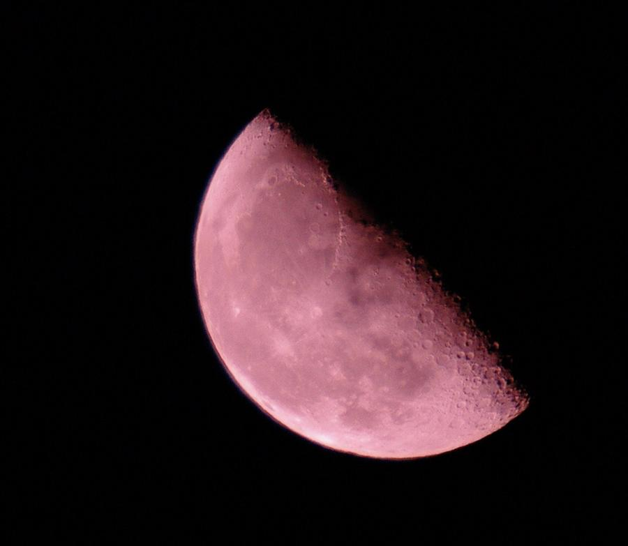 Half The Moon  Photograph