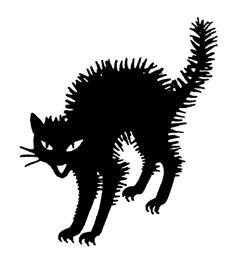 S Silhouette Portraits Cats
