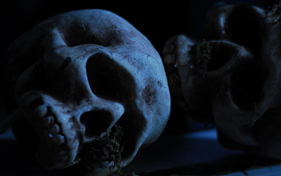 Halloween Skulls Photograph