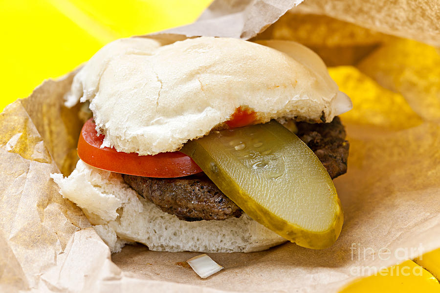 Hamburger Photograph - Hamburger With Pickle And Tomato by Elena Elisseeva