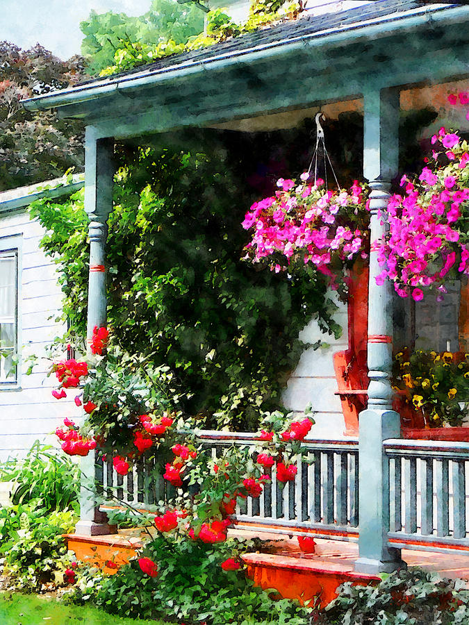 Hanging baskets and climbing roses photograph by susan savad - Hanging baskets for balcony ...