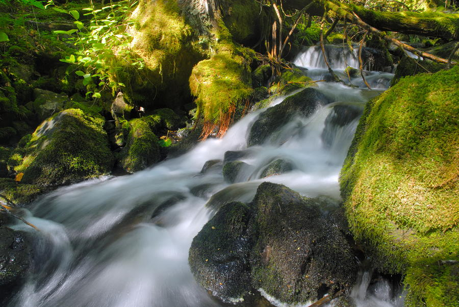 Hanson Falls Photograph