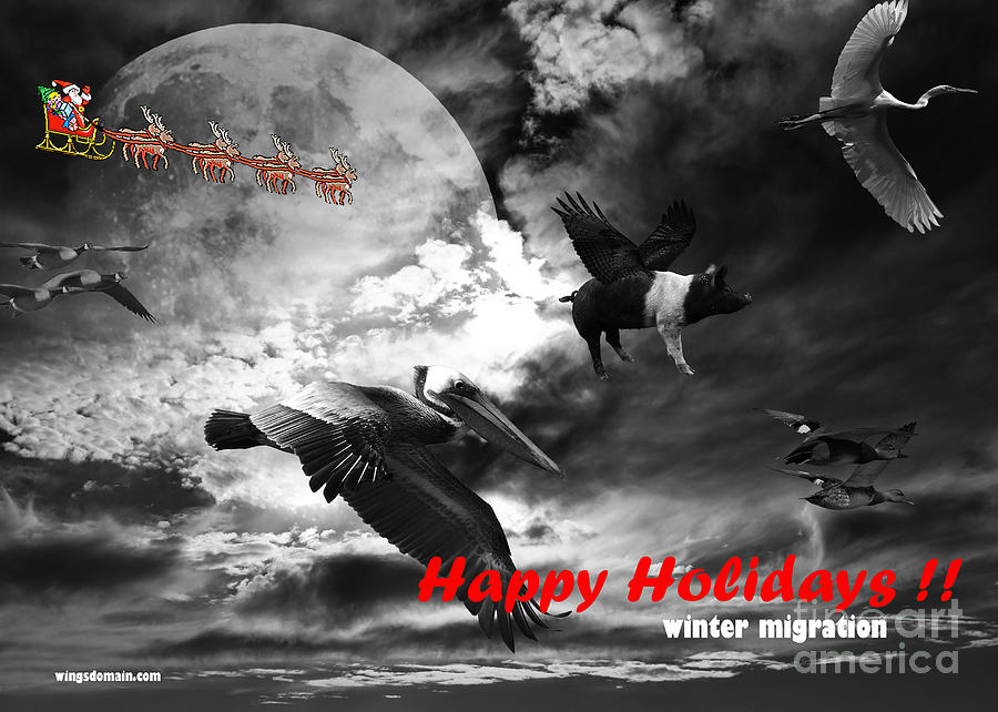 Happy Holidays . Winter Migration . Bw Photograph  - Happy Holidays . Winter Migration . Bw Fine Art Print