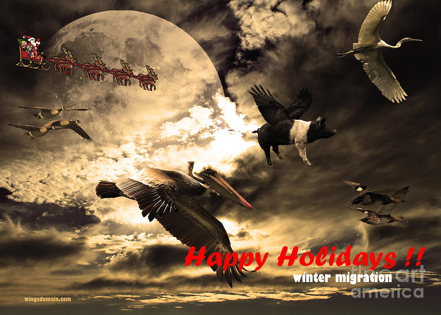 Happy Holidays . Winter Migration Photograph  - Happy Holidays . Winter Migration Fine Art Print