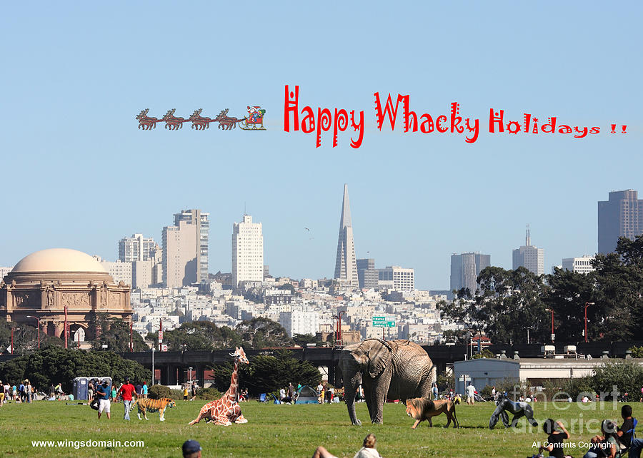 Happy Whacky Holidays Photograph  - Happy Whacky Holidays Fine Art Print