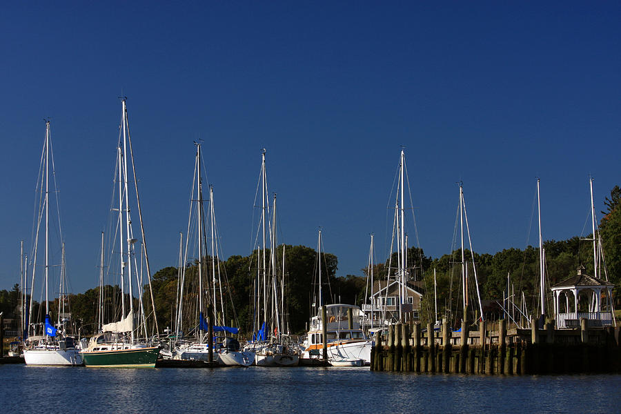 Harbor View Photograph