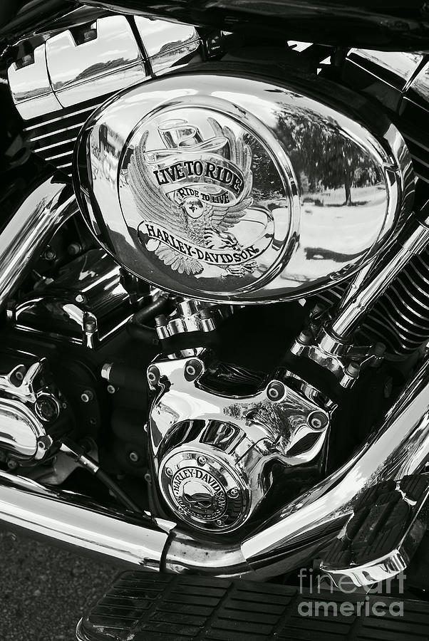 Harley Davidson Bike - Chrome Parts 02 Photograph  - Harley Davidson Bike - Chrome Parts 02 Fine Art Print