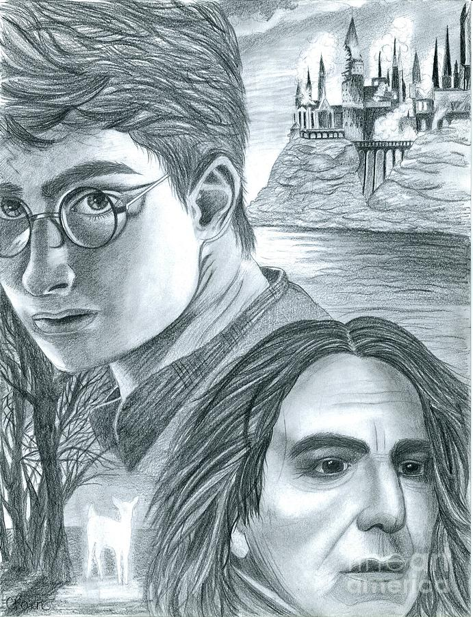 Harry Drawing - Harry Potter by Crystal Rosene