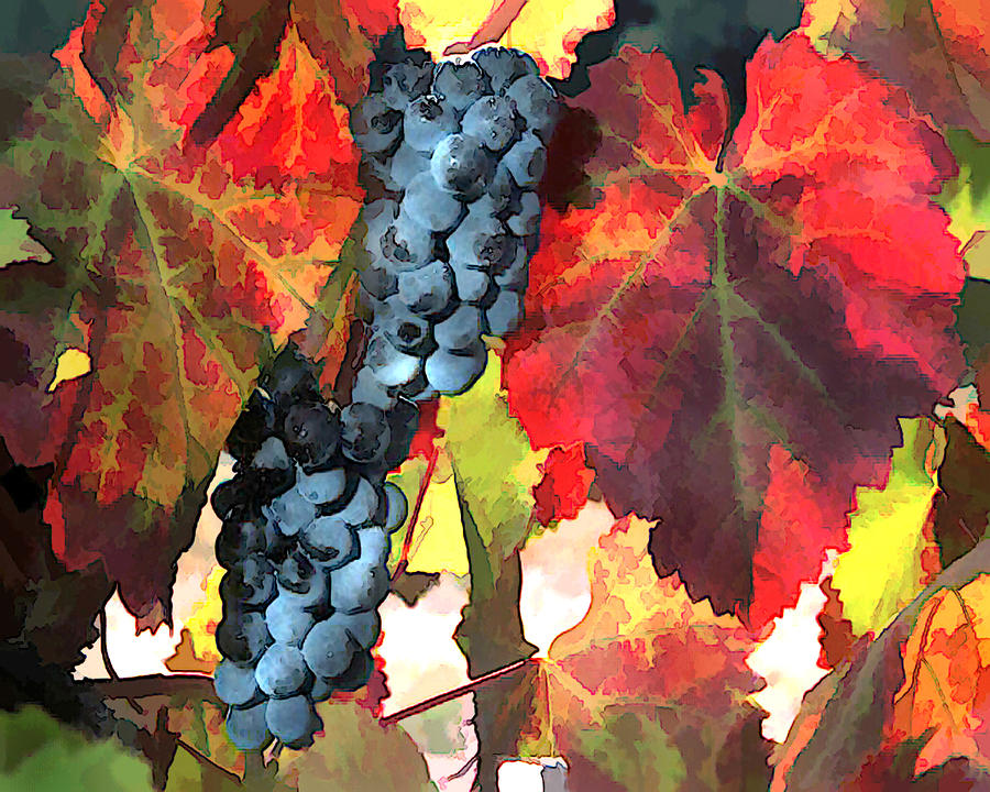 Harvest Time Grapes And Leaves Painting  - Harvest Time Grapes And Leaves Fine Art Print