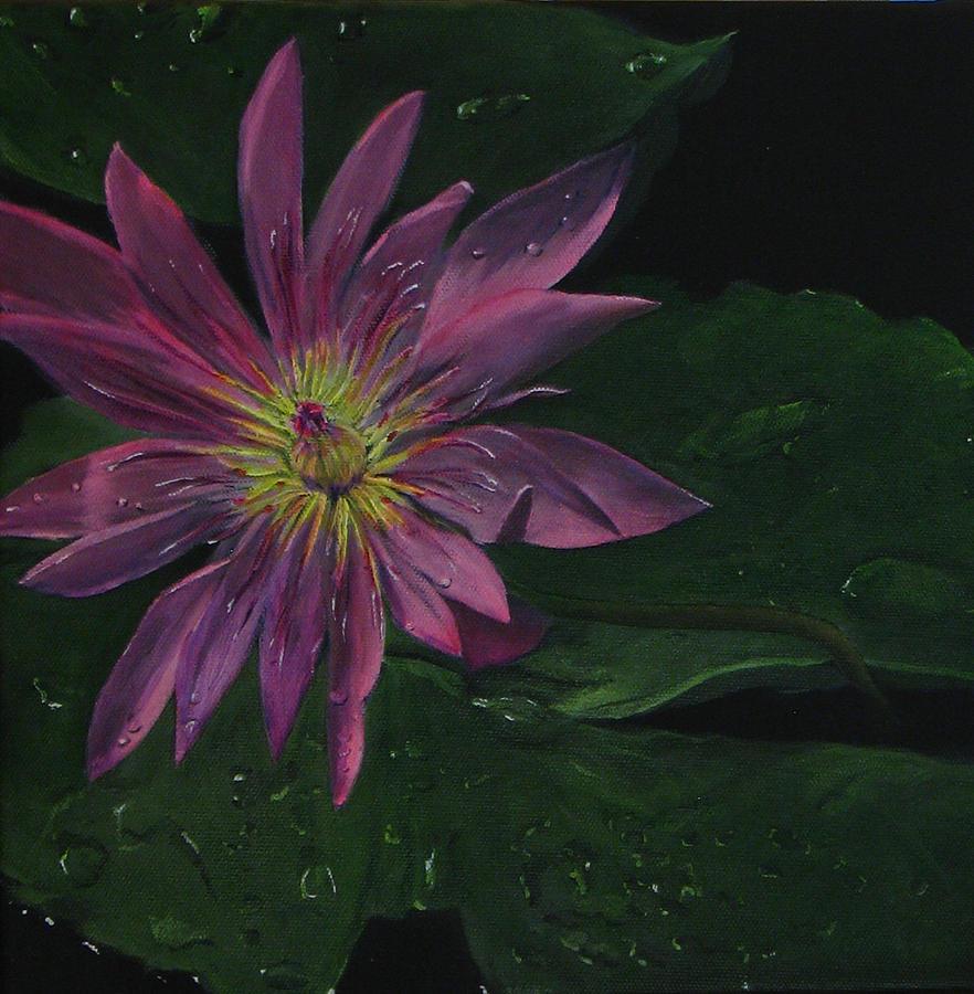 Hawaiian Water Lily - Pink Painting