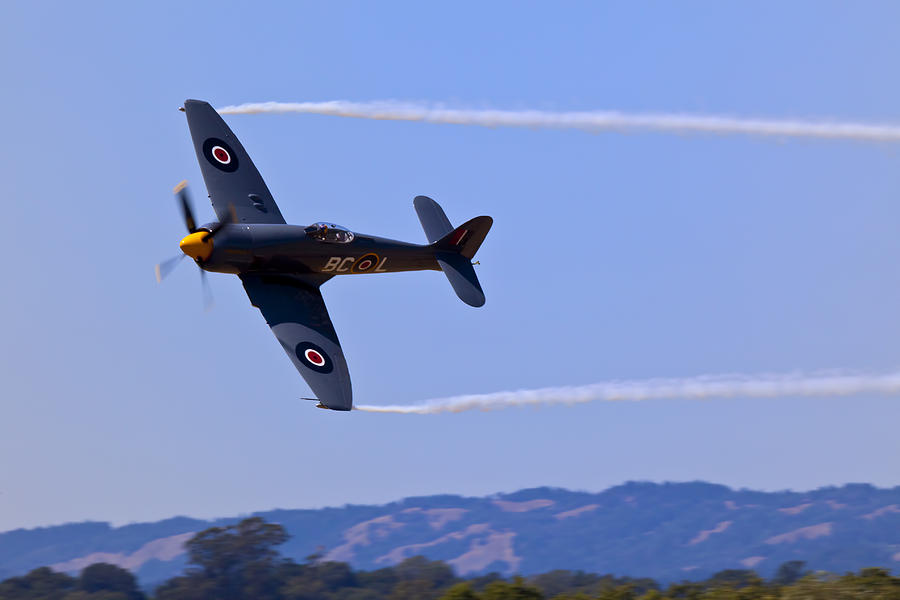 Hawker Sea Fury Photograph  - Hawker Sea Fury Fine Art Print