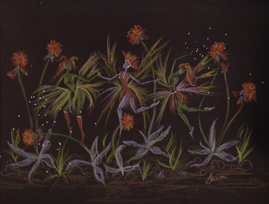 Hawkweed Dance Drawing  - Hawkweed Dance Fine Art Print