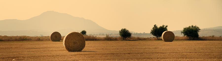 Hay Rolls  Photograph