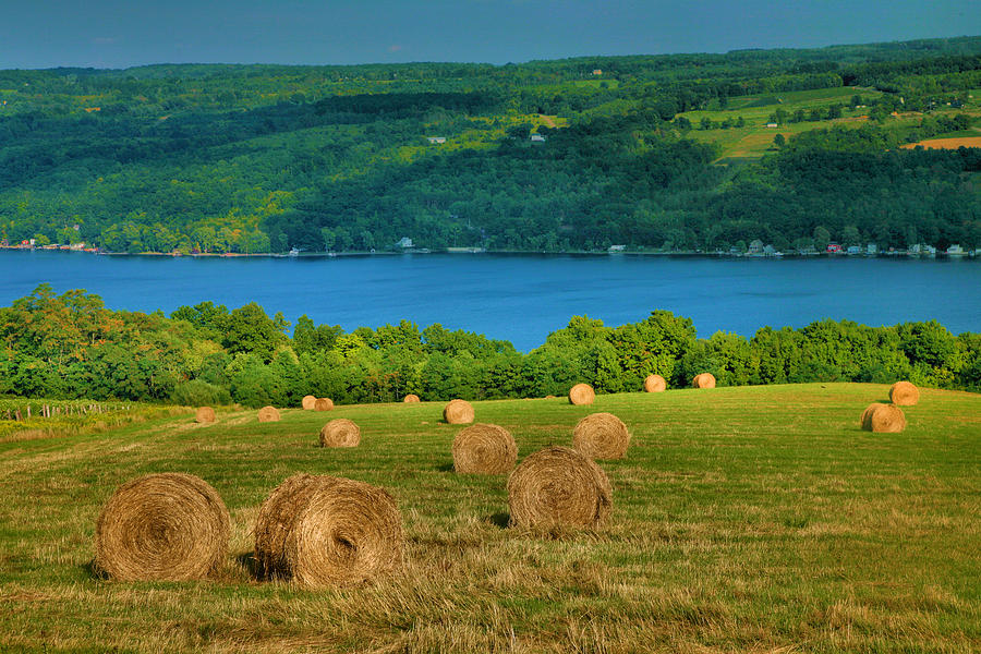 Hayfield And Lake Iv Photograph  - Hayfield And Lake Iv Fine Art Print