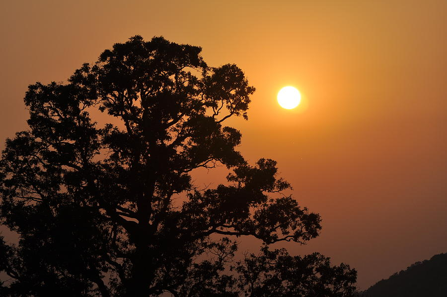 Hazy Sunset Photograph  - Hazy Sunset Fine Art Print