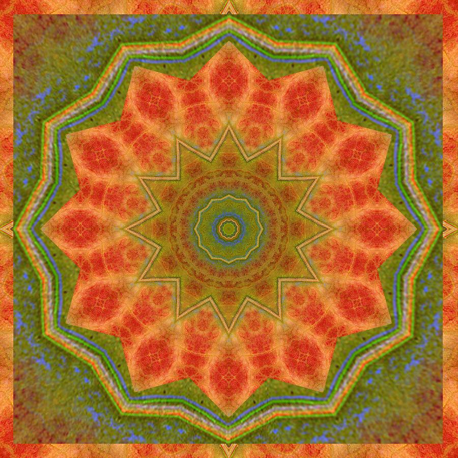 Healing Mandala 14 Photograph