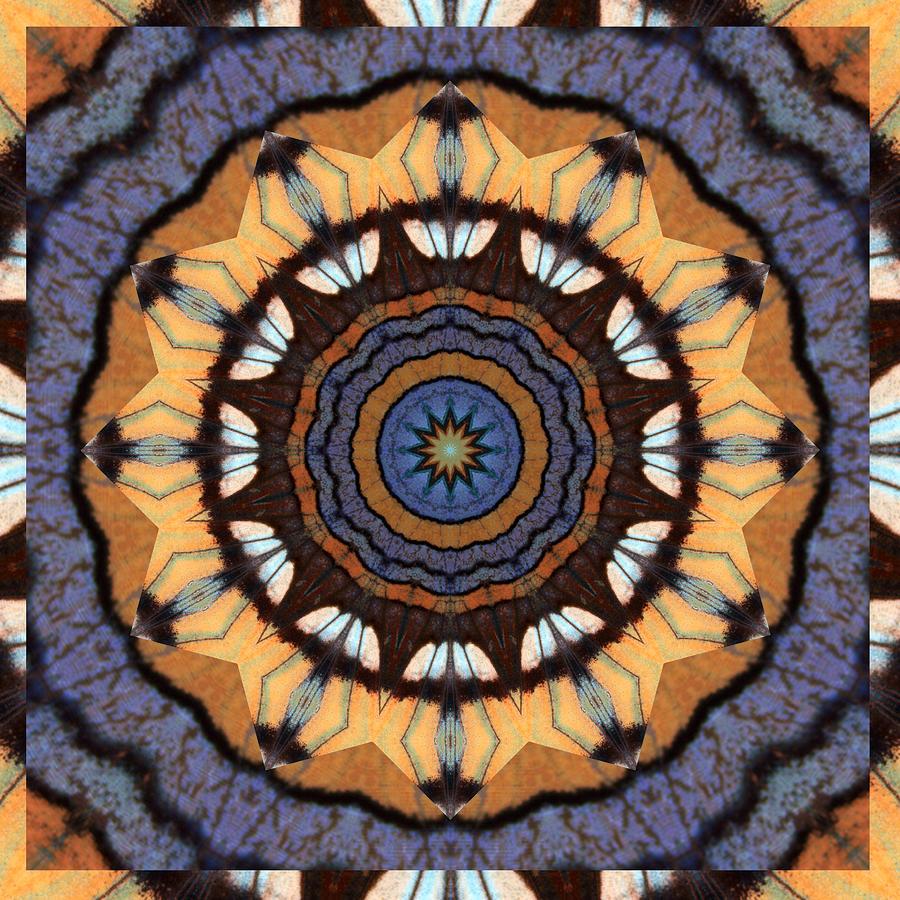 Healing Mandala 16 Photograph