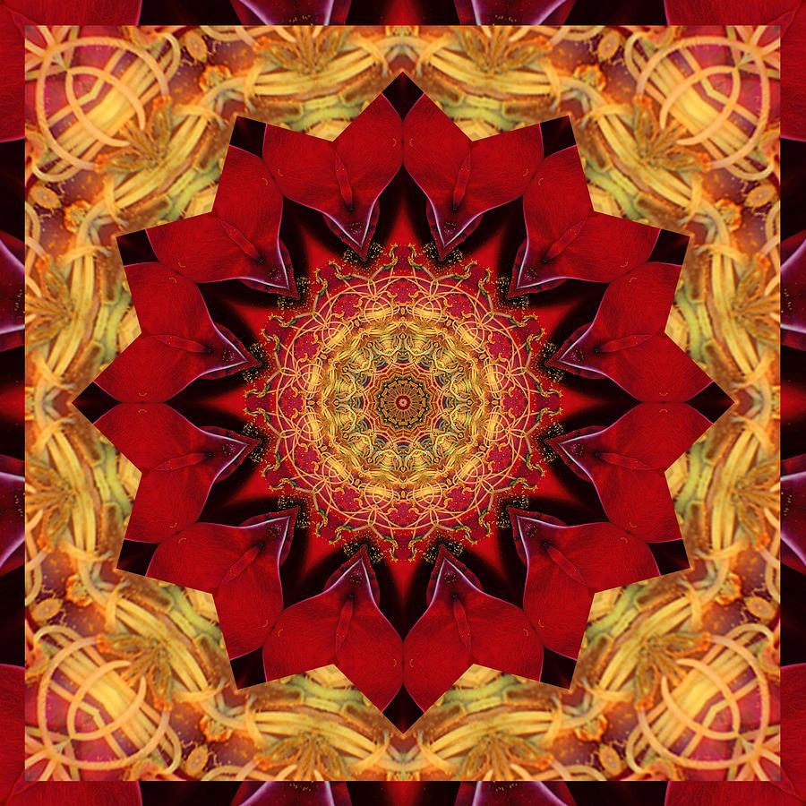 Healing Mandala 28 Photograph