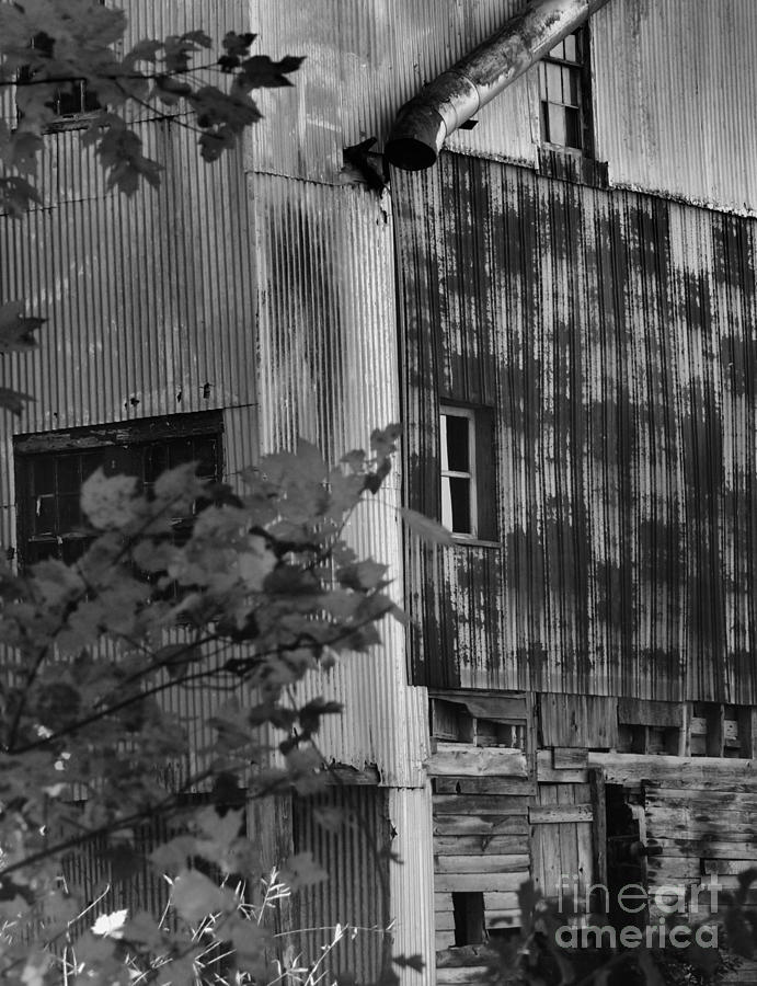 Hearns Feed Mill Photograph  - Hearns Feed Mill Fine Art Print
