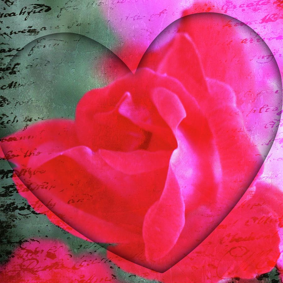 Heart And Rose Photograph  - Heart And Rose Fine Art Print