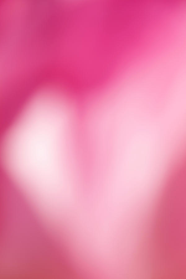 Heart In Pink Photograph  - Heart In Pink Fine Art Print