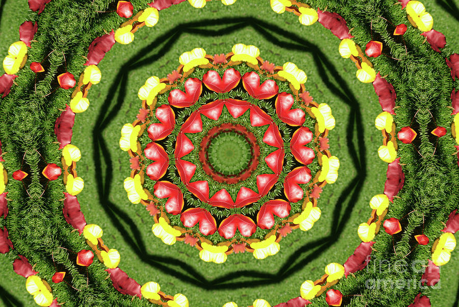 Heart Kaleidoscope Digital Art - Heart Kaleidoscope by Mariola Bitner