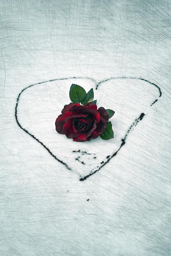 Heart Of Blood Photograph