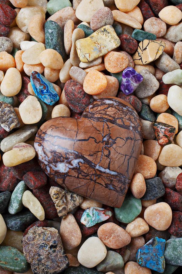 Heart Stone Among River Stones Photograph