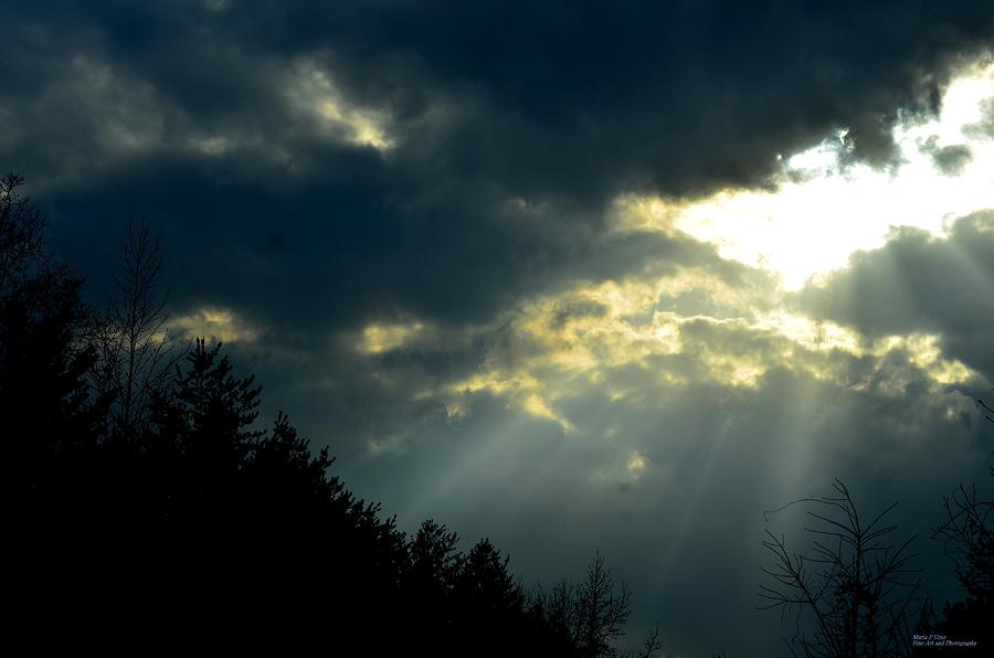 Heaven Sent Photograph  - Heaven Sent Fine Art Print