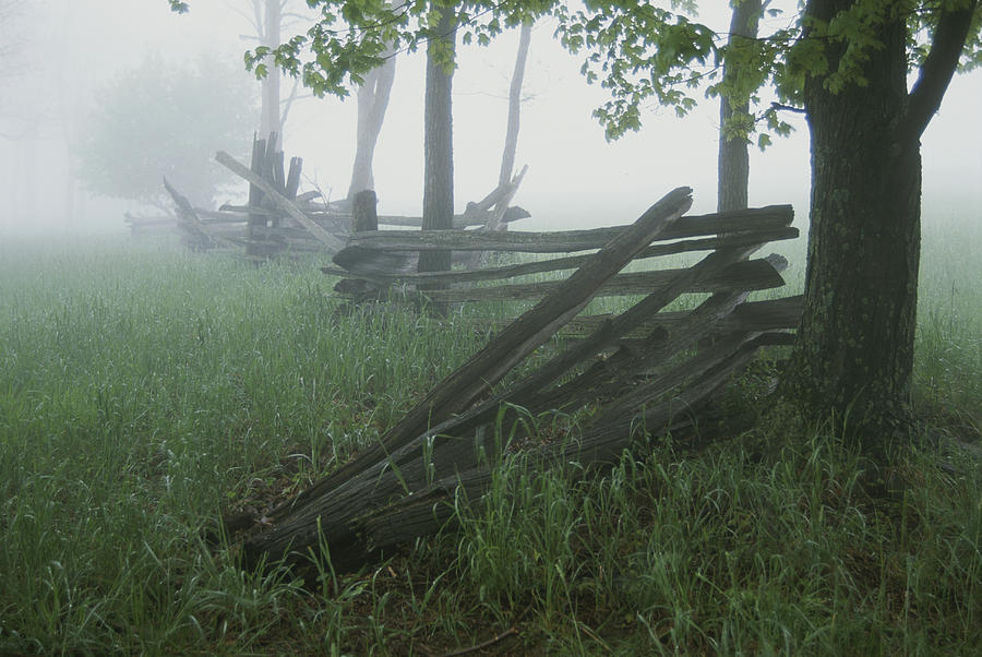Heavy Fog Hangs Over Split Rail Fences Photograph
