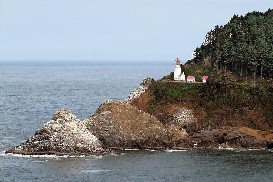 Heceta Head Lighthouse - Oregons Scenic Pacific Coast Viewpoint Photograph