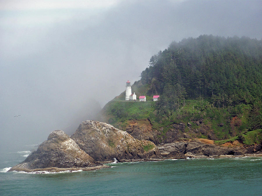 Heceta Lighthouse Oregon Coast Pictures to Pin on Pinterest - PinsDaddy