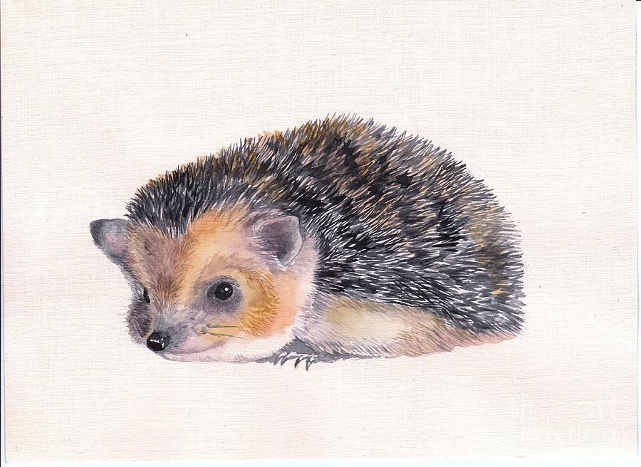 Download image Hedgehog Painting PC, Android, iPhone and iPad ...