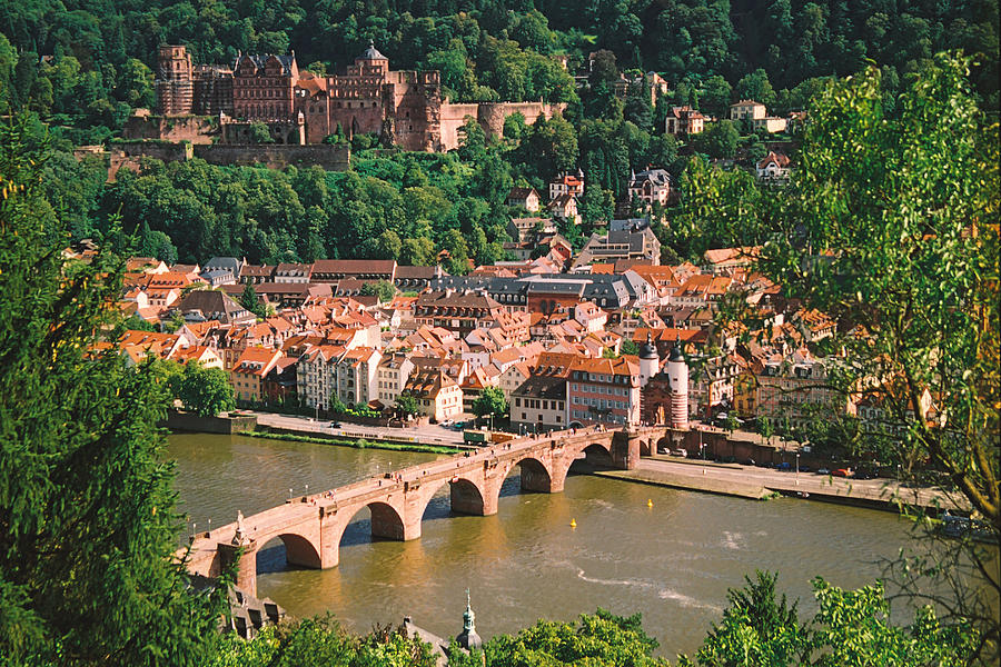 Heidelburg Bridge Pyrography  - Heidelburg Bridge Fine Art Print