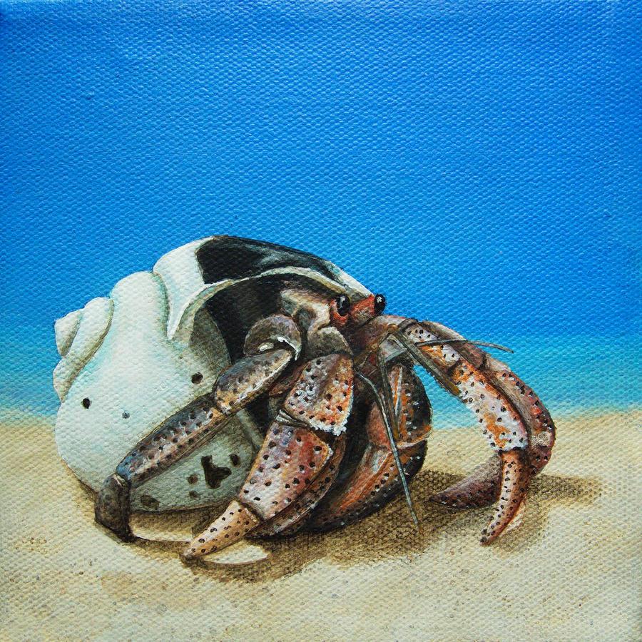 Hermit Crab Painting by Cindy D Chinn Hermit Crab Art