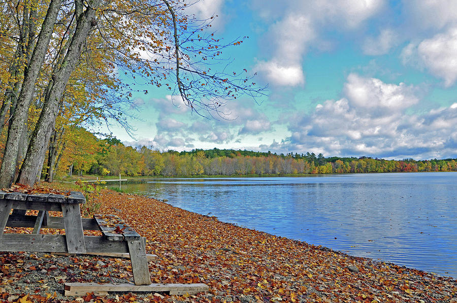 Hermon Pond Fall Foliage Photograph