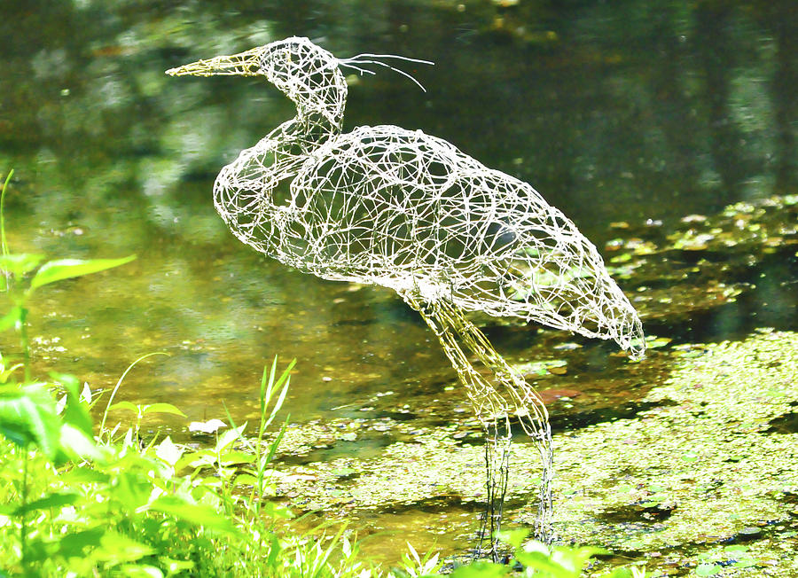 Heron Day Shot At The Pond   Sculpture  - Heron Day Shot At The Pond   Fine Art Print