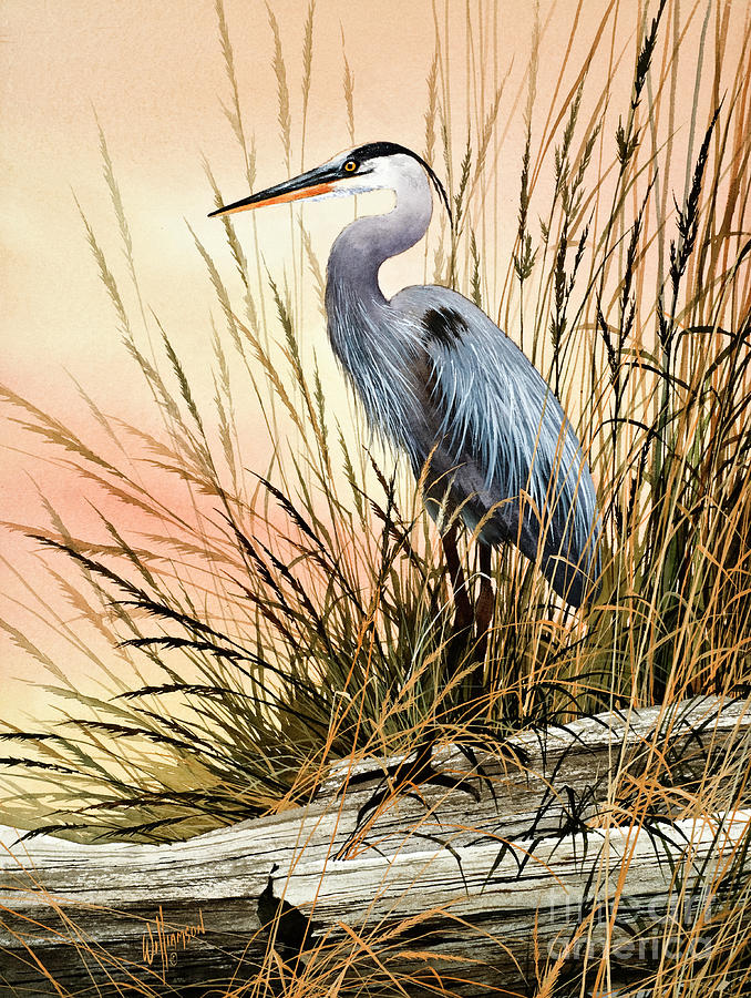 Heron Sunset Painting