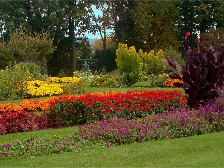 large flower gardens in pa joy studio design gallery best design