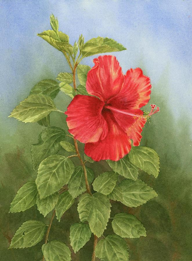 Hibiscus Painting - Hibiscus by Leona Jones