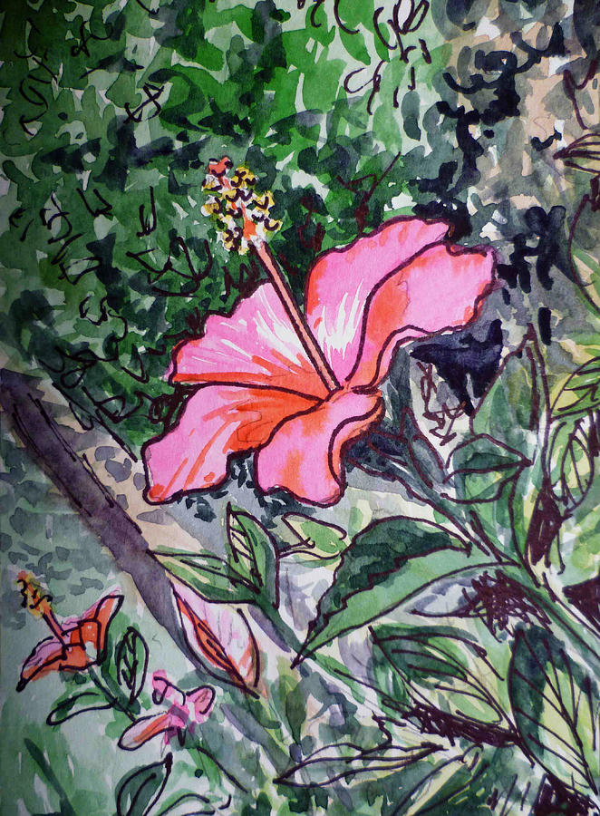 Hibiscus Sketchbook Project Down My Street  Painting  - Hibiscus Sketchbook Project Down My Street  Fine Art Print