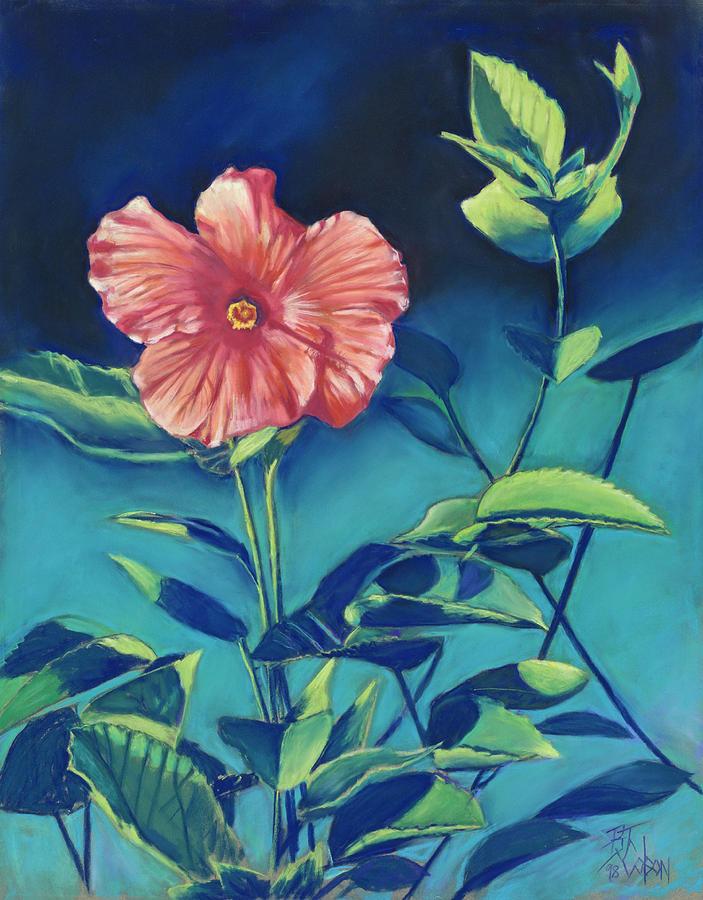 Hibisicus Pastel